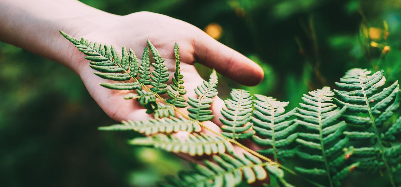 ABC Pack Solutions herbruikbare en ecologische draagtassen
